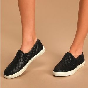 Steve Madden Black Ecentrcq Sneakers